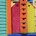 Birdhouses For Colorful Birds 5 by Bob Christopher