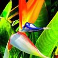 Birdie  by Stewart Aycock