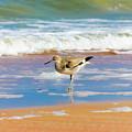 Birdling by Marisela Roman