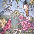 Birds 2 by Joseph Sandora Jr