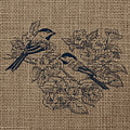 Birds And Burlap 1 by Brandi Fitzgerald