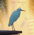 Birds And Fun At Butler Park Austin - Birds 3 Detail Macro Poster - Good Morning by Felipe Adan Lerma