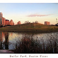 Birds And Fun At Butler Park Austin - Silhouettes 1 Poster And Greeting Card by Felipe Adan Lerma