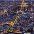 Bird's Eye On Paris 1 by Pablo Lopez