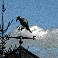 Bird's Eye View I by Jody Carnes