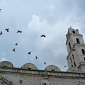 Birds Flying Above The Basilica And The Monastery Of Saint Francis Of Assisi by Sami Sarkis