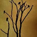 Birds In Tree by Dave Gordon