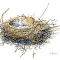 Bird's Nest Watercolor Painting by Karla Beatty