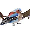 Birds Of A Feather by Nancy Moniz