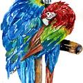 Birds Of Color by Marilyn Barton