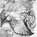 Birds Of Prey Collage One by Lucien Van Oosten