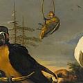 Birds On A Balustrade, Melchior D'hondecoeter, C. 1680 - C. 1690 by Melchior d Hondecoeter