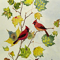 Birds On Maple Tree 2 by Ying Wong