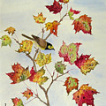 Birds On Maple Tree 5 by Ying Wong