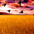 Birds Over Wheat Field by Anthony Caruso