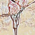 Bird's Views by Catherine Lott