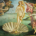 Birth Of Venus - Botticelli by Weston Westmoreland