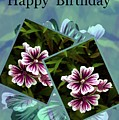 Birthday Card by Sherman Perry