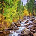 Bishop Creek In Autumn by Lynn Bauer