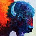 Bison Head Color Study I by Marion Rose