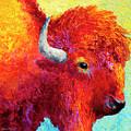 Bison Head Color Study Iv by Marion Rose