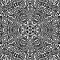 Black And  White 27 by Robert Thalmeier