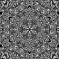 Black And  White 28 by Robert Thalmeier
