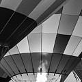 Black And White Balloons by Paul Quinn