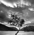 Black And White Beautiful Landscape Image Of Llyn Padarn At Sunr by Matthew Gibson