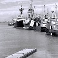 Black And White Fishing Boats On The Dock by Dan Sproul