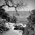 Black And White Grand Canyon 2 by Aimee L Maher ALM GALLERY