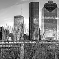 Black And White Houston Texas City Skyline by Gregory Ballos