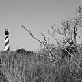 Black And White Lighthouse by Jill Lang