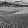 Black And White Mesquite Sand Dunes by Adam Jewell