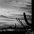 Black And White Night In Arizona by Billy Bateman