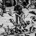 Black And White Of Boy Feeding Pigeons In Sarajevo, Bosnia And Herzegovina  by Global Light Photography - Nicole Leffer