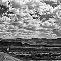 Black And White Panorama Of Davis Mountains  - Jefferson Davis County West Texas by Silvio Ligutti