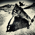 Black And White Photography Shipwreck Pinhole by Dapixara Art