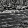 Black And White Prairie River Rapids by Dale Kauzlaric