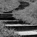 Black And White Steps by Kyle West