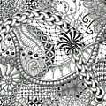 Black And White Tangle Art by Stefanie Van Leeuwen