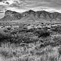 Black And White View Of El Capitan And Guadalupe Peak - Guadalupe Mountains National Park West Texas by Silvio Ligutti