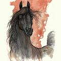 Black Arabian Horse 2013 11 13 by Angel Ciesniarska