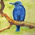Black As Blue Bird by Patricia Arroyo