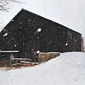Black Barn II by Mary Jo Townsend