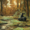 Black Bear - Autumn by Michael Scherer