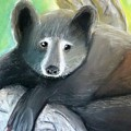 Black Bear by Alexandra Herr