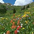 Black Bear Pass Landscape by Cascade Colors