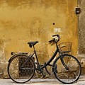Black Bike In Florence by Patricia Strand