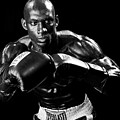 Black Boxer In Black And White 07 by Val Black Russian Tourchin